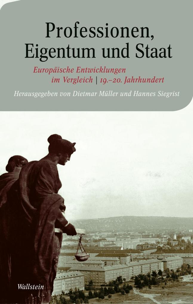 Professionen, Eigentum und Staat als eBook pdf