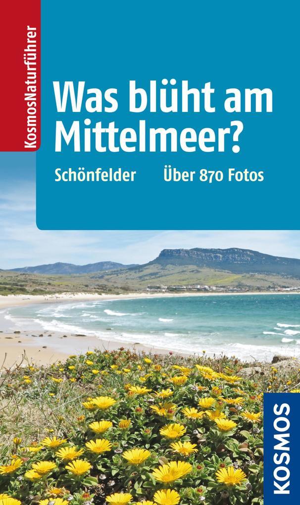 Was blüht am Mittelmeer? als eBook