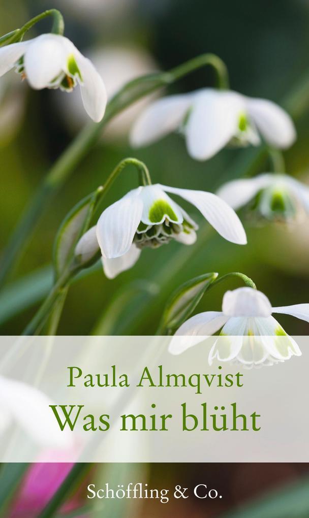 Was mir blüht als eBook Download von Paula Almq...