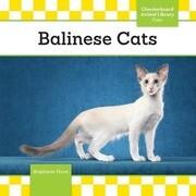 Balinese Cats