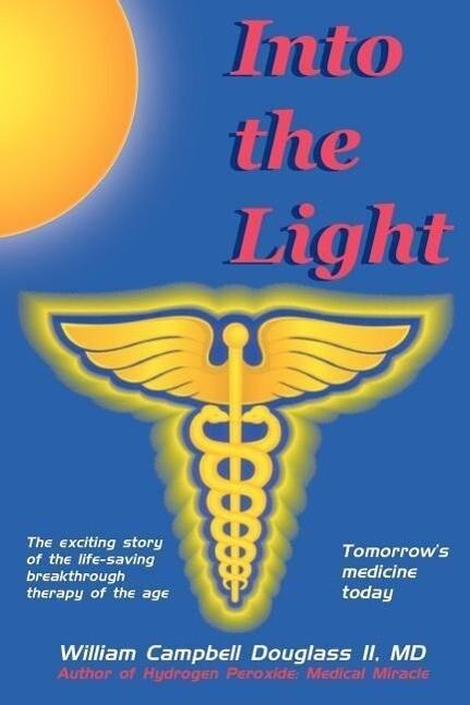 Into the Light als Taschenbuch