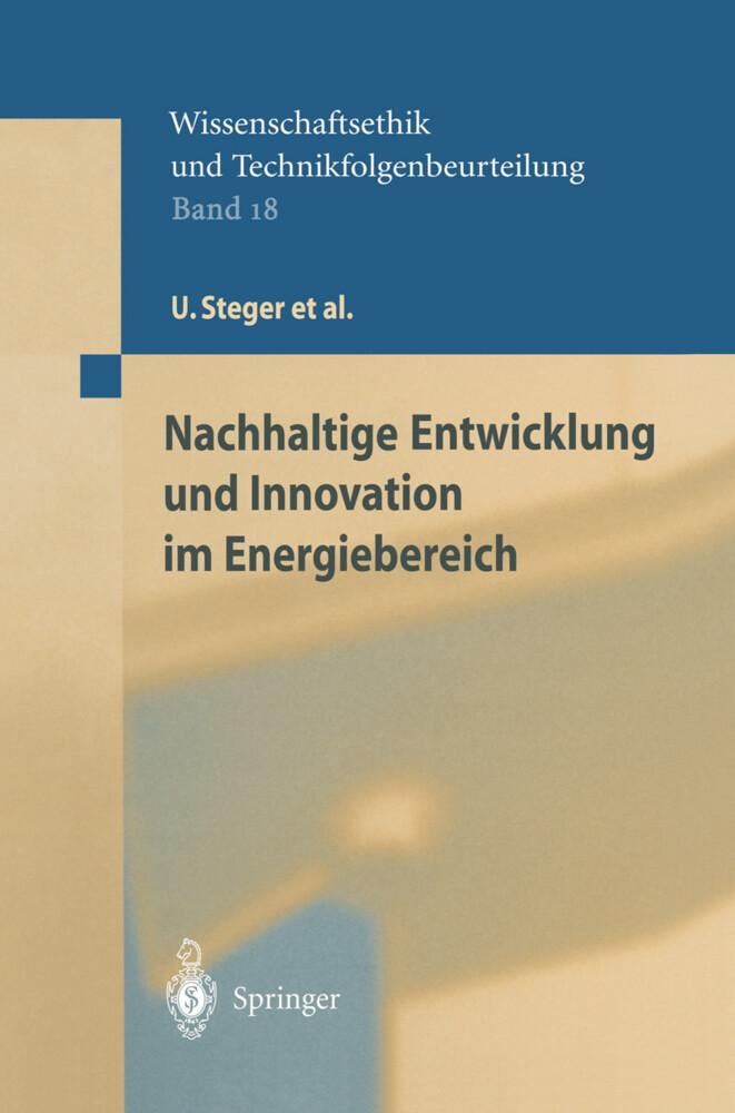 Nachhaltige Entwicklung und Innovation im Energiebereich als Buch