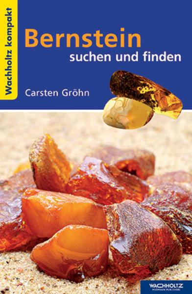 Bernstein suchen und finden KOMPAKT als Buch