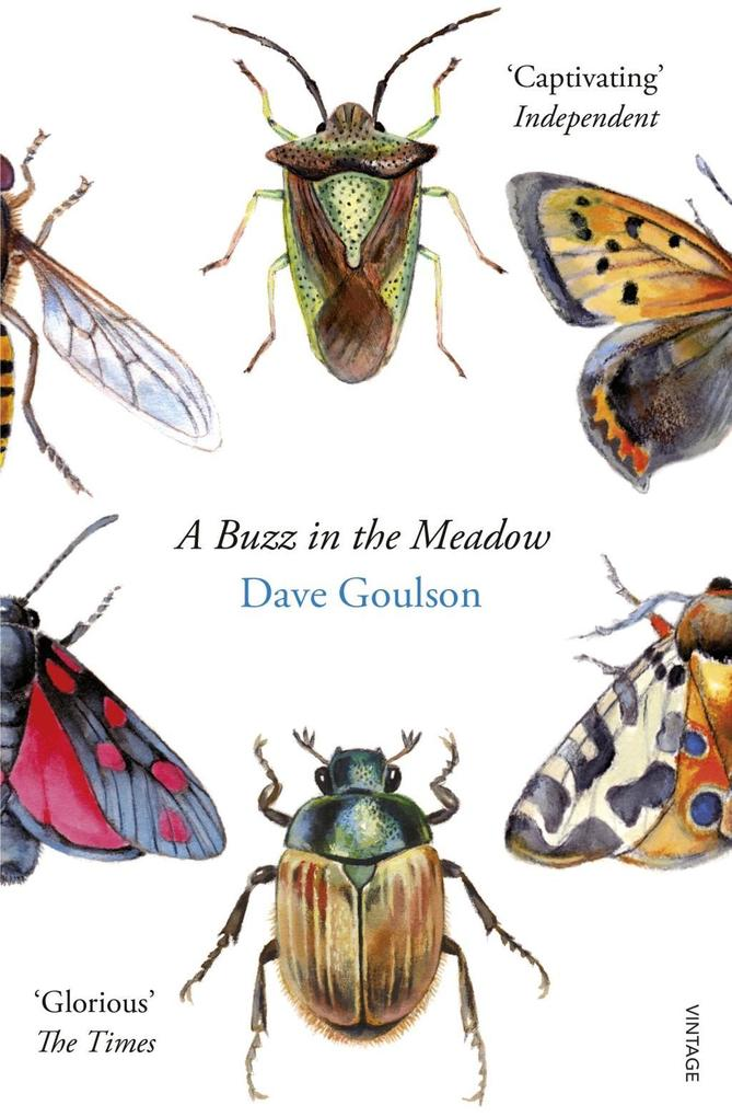 A Buzz in the Meadow als eBook Download von Dav...