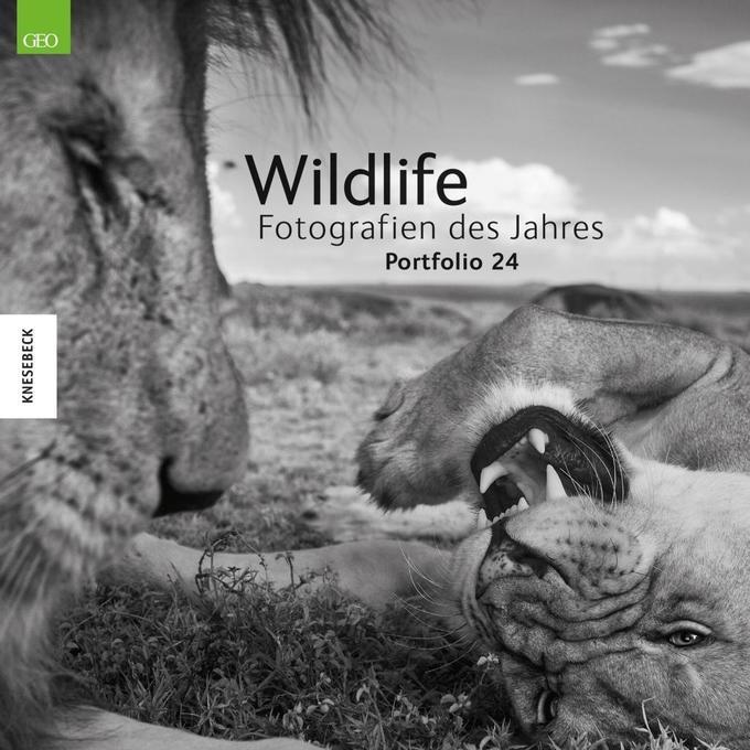 Wildlife Fotografien des Jahres - Portfolio 24 ...