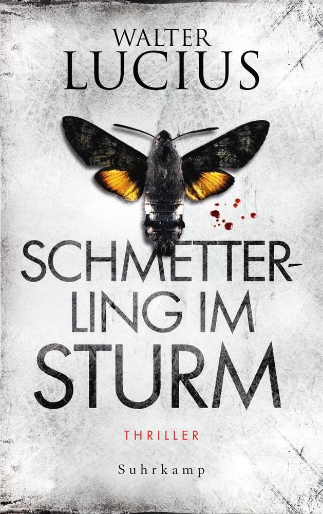 Schmetterling im Sturm als Buch
