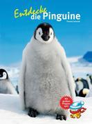 Entdecke die Pinguine