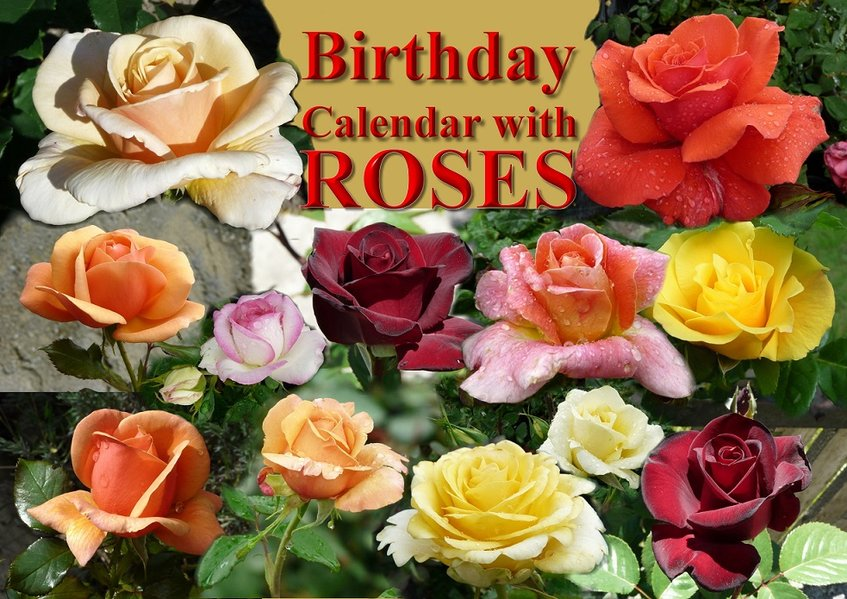 Birthday Calendar with ROSES