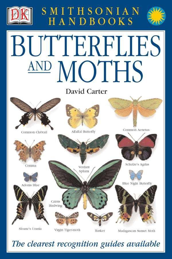 Smithsonian Handbooks: Butterflies & Moths: The Clearest Recognition Guide Available als Taschenbuch