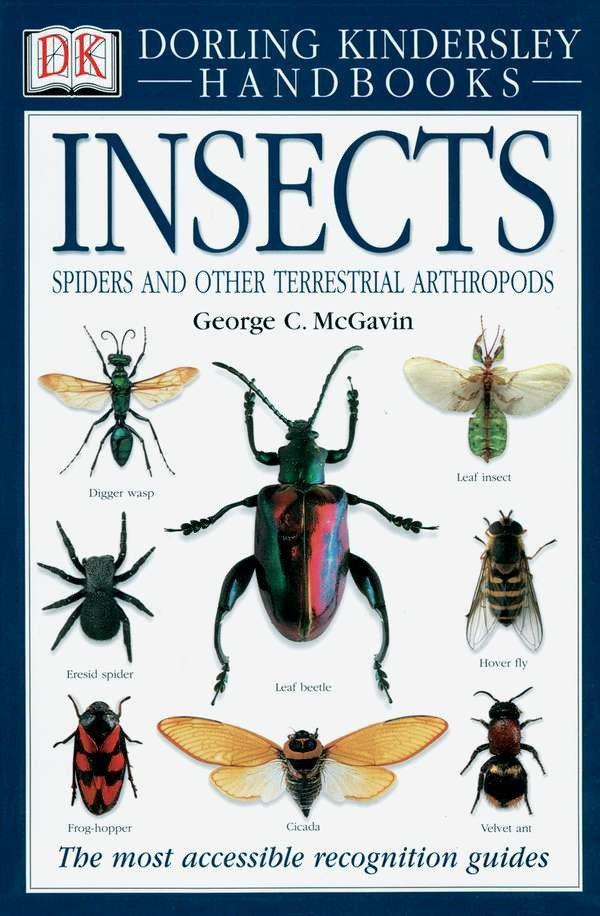 Smithsonian Handbooks: Insects: The Most Accessible Recognition Guide als Taschenbuch