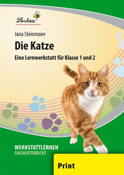 Die Katze als Buch von Jana Steinmaier