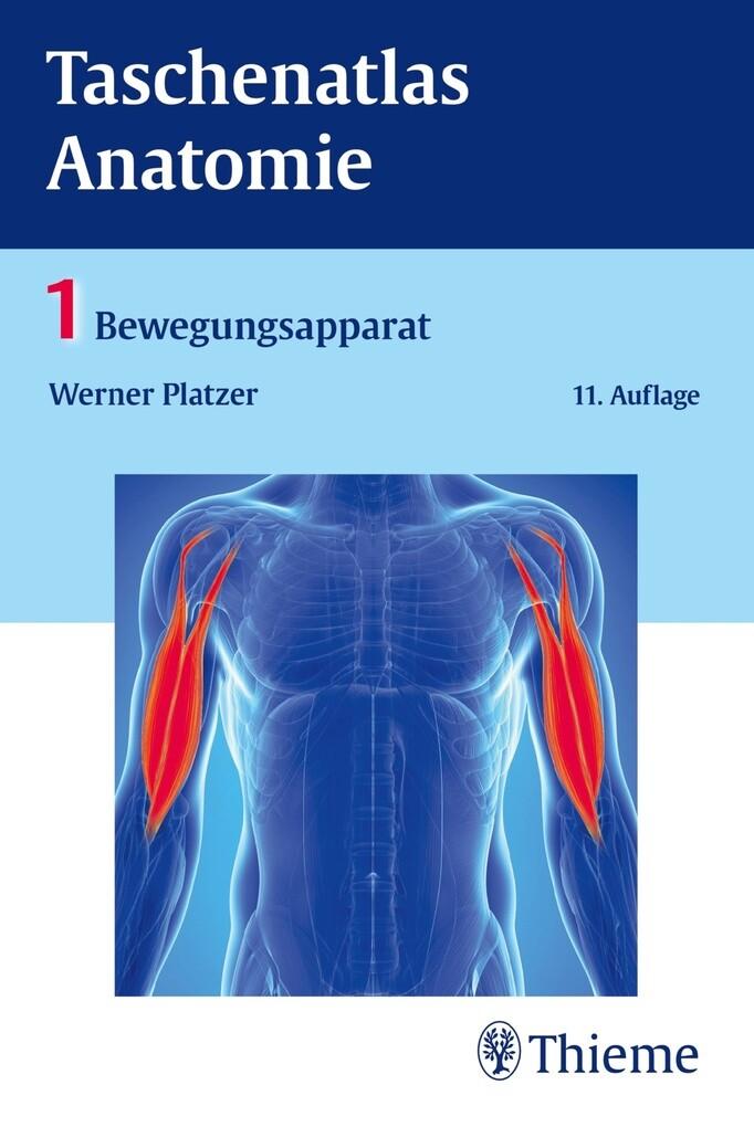Ausgezeichnet Wesentliche Der Anatomie Und Physiologie Martini ...