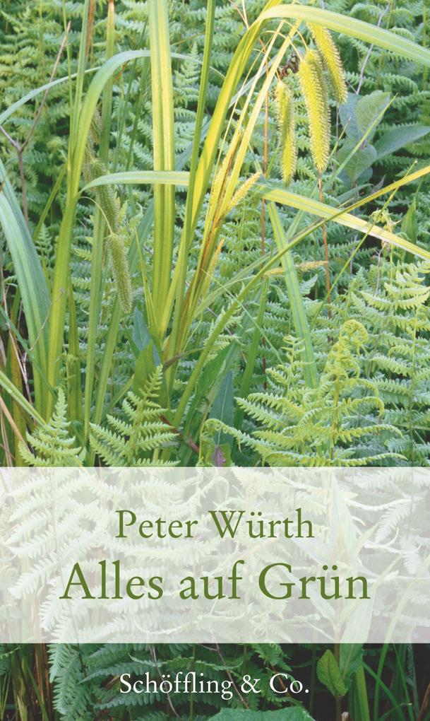 Alles auf Grün als eBook Download von Peter Würth