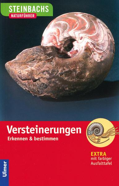 Steinbachs Naturführer. Versteinerungen als Buch