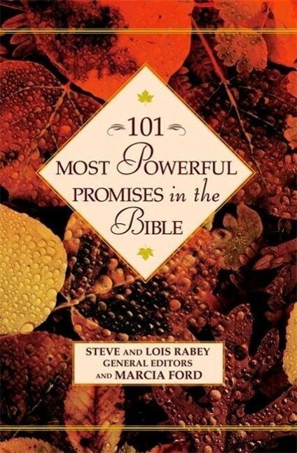101 Most Powerful Promises in the Bible als Buch