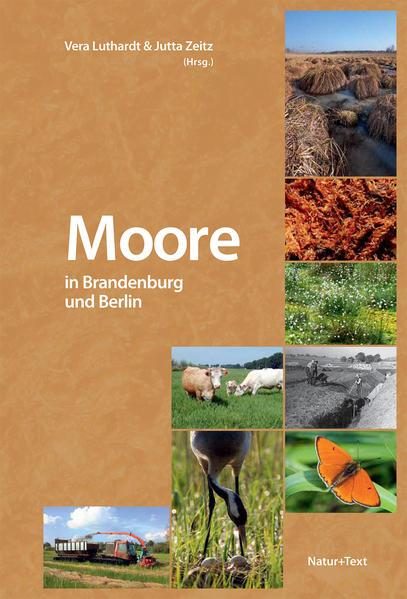 Moore in Brandenburg und Berlin als Buch von