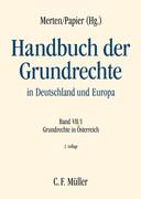 Handbuch der Grundrechte in Deutschland und Europa VII/1: