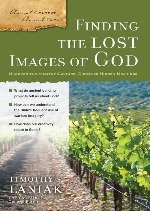 Finding the Lost Images of God als eBook Downlo...