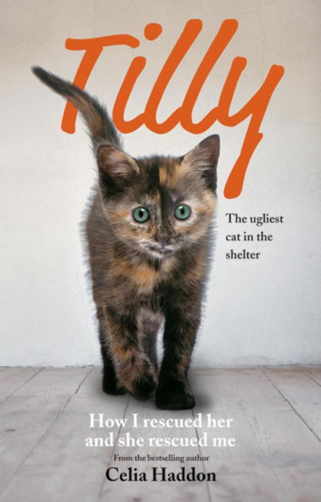Tilly: The Ugliest Cat als eBook Download von C...