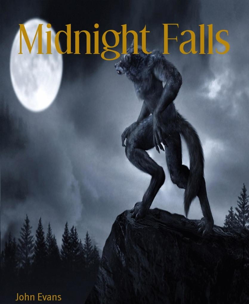 Midnight Falls als eBook Download von John Evans