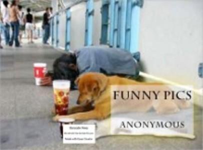 Funny Pics als eBook Download von Anonymous