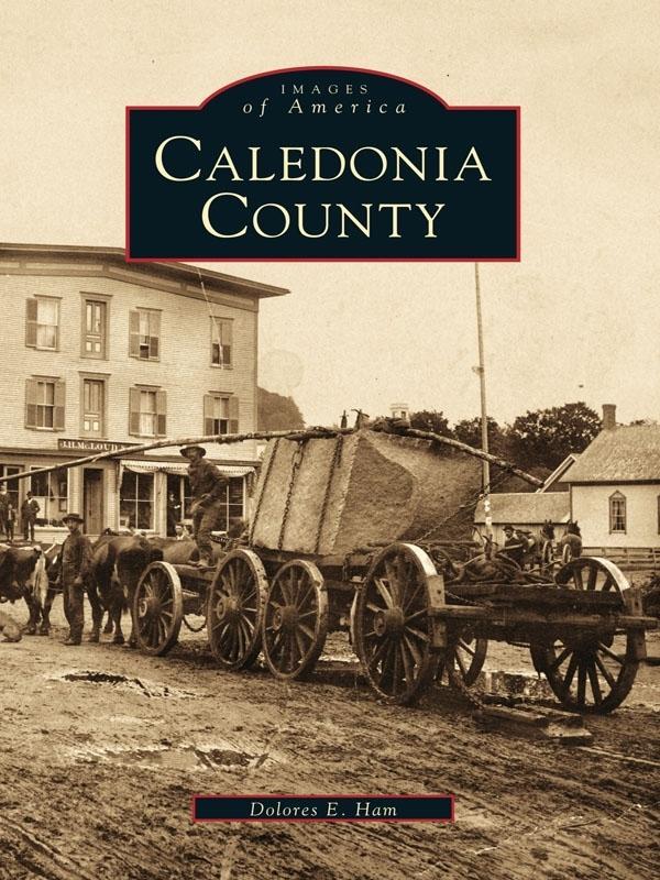 Caledonia County als eBook Download von Dolores...
