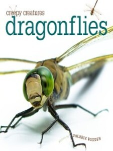 Dragonflies als eBook Download von Valerie Bodden