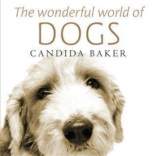Wonderful World of Dogs als eBook Download von ...