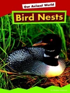 Bird Nests als eBook Download von Heather Adamson