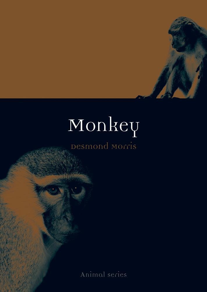 Monkey als eBook Download von Desmond Morris