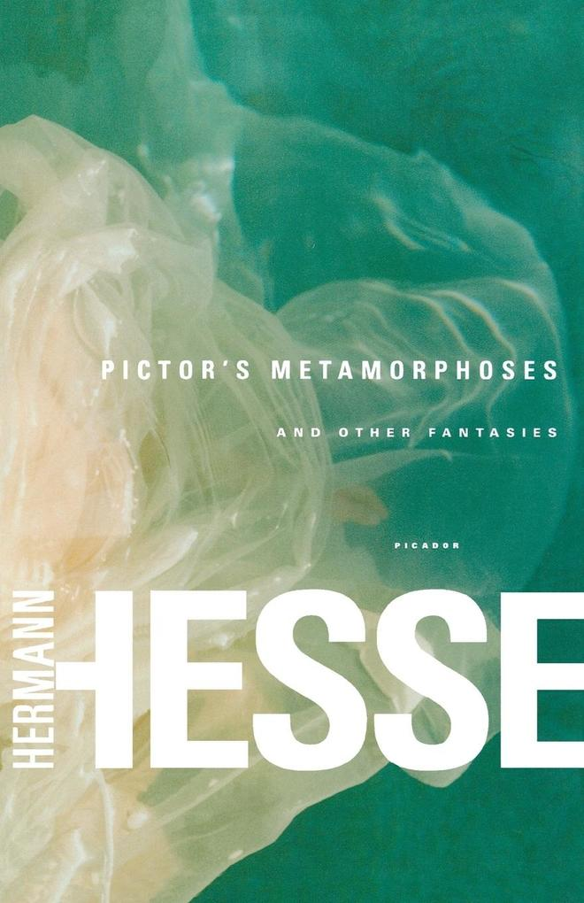 Pictor's Metamorphoses als Buch