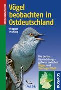 Vögel beobachten in Ostdeutschland