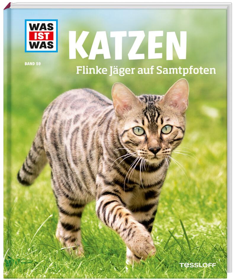 Katzen. Flinke Jäger auf Samtpfoten als Buch