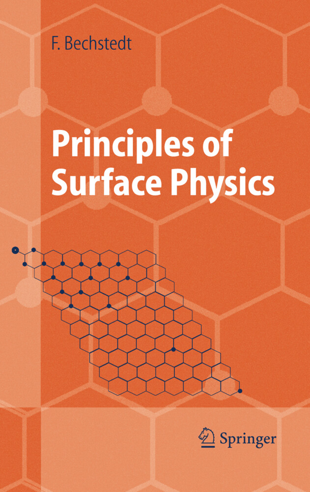 Principles of Surface Physics als Buch