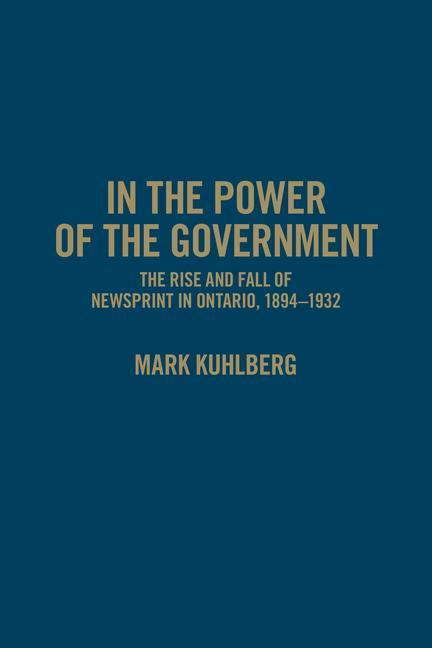 In the Power of the Government als Buch (gebunden)