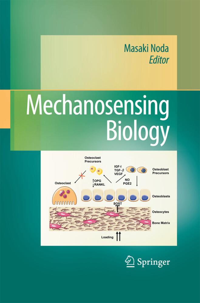 Mechanosensing Biology als Buch (gebunden)