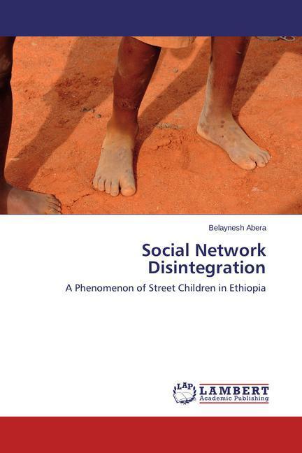 Social Network Disintegration als Buch (gebunden)
