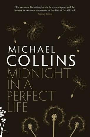 Midnight in a Perfect Life als eBook Download v...