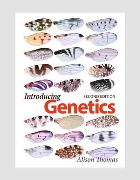 Introducing Genetics als Taschenbuch