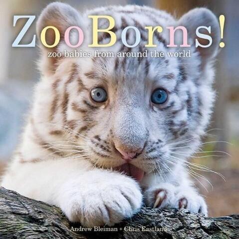 Zooborns!: Zoo Babies from Around the World als Taschenbuch