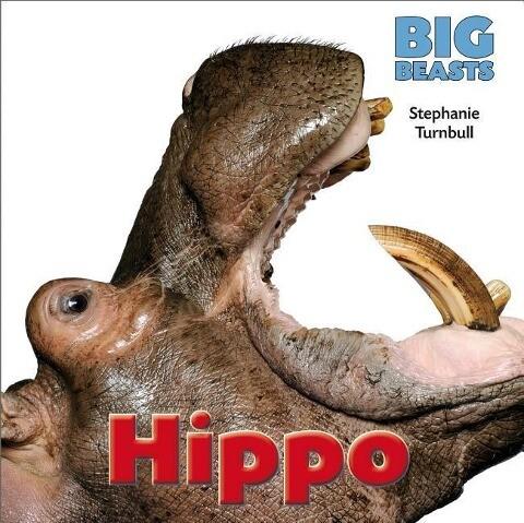 Hippo als Buch (gebunden)