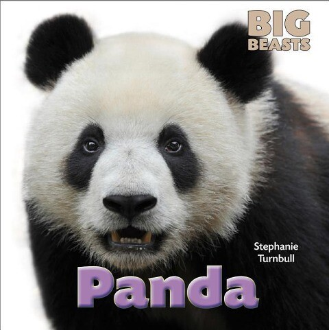 Panda als Buch (gebunden)