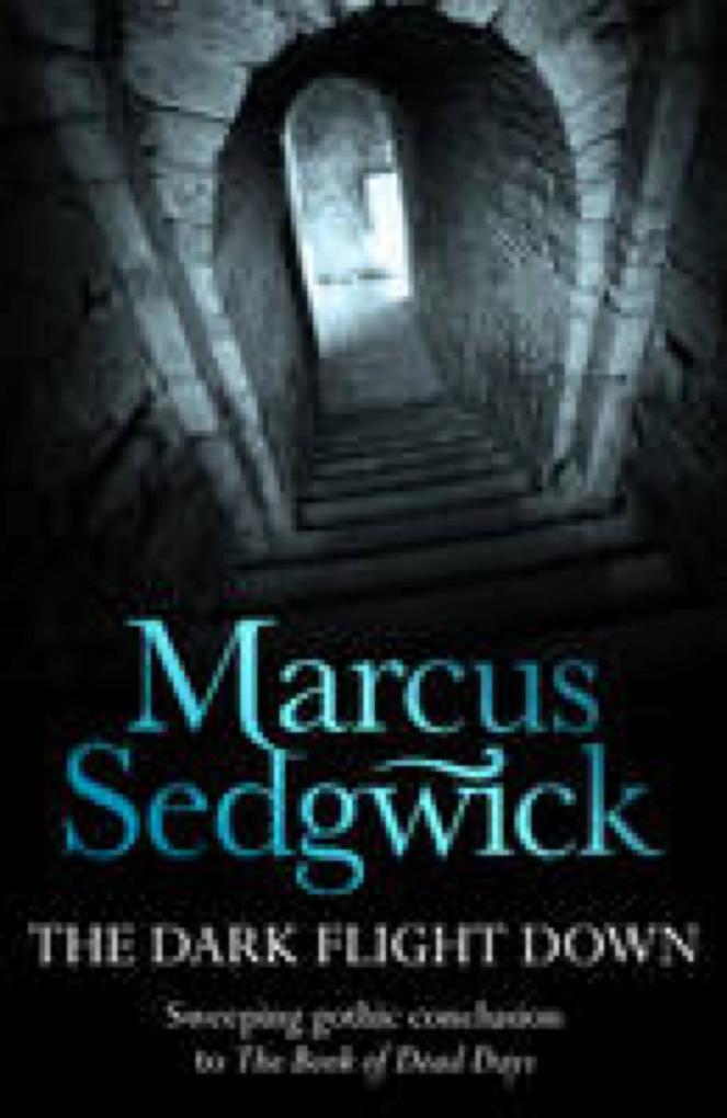 The Dark Flight Down als eBook epub
