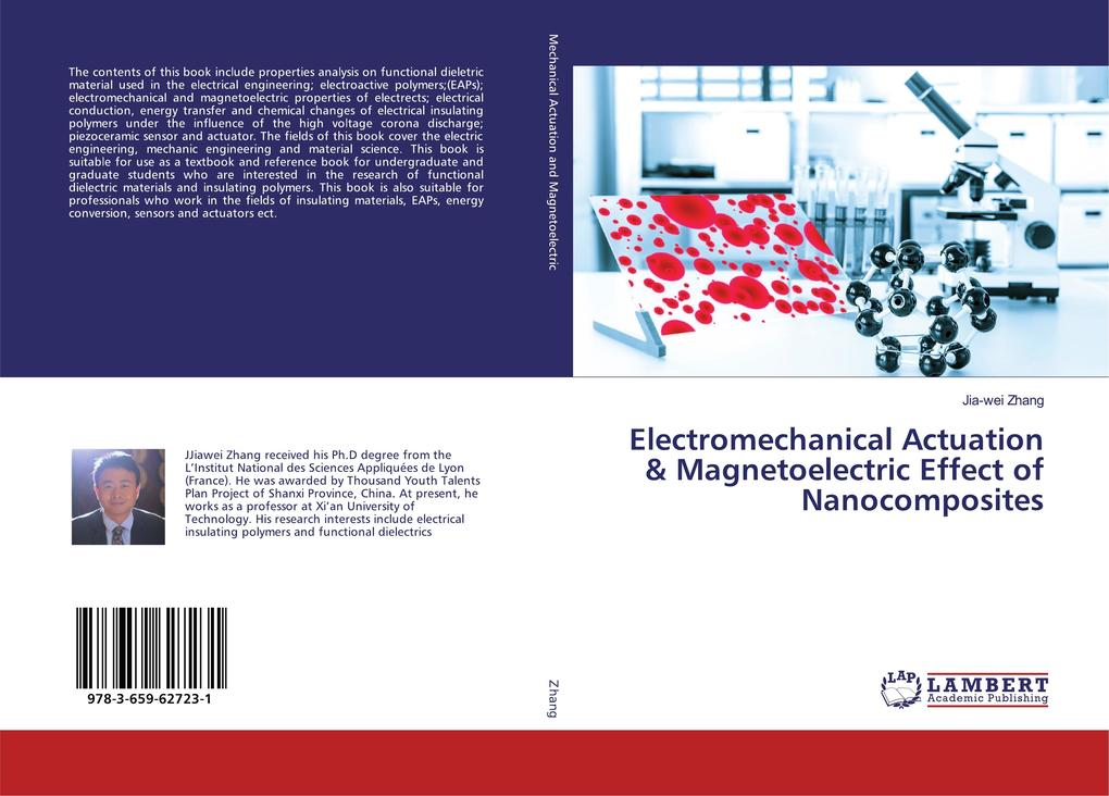 Multi-functional Nanocomposites for the Energy Conversion als Buch (gebunden)