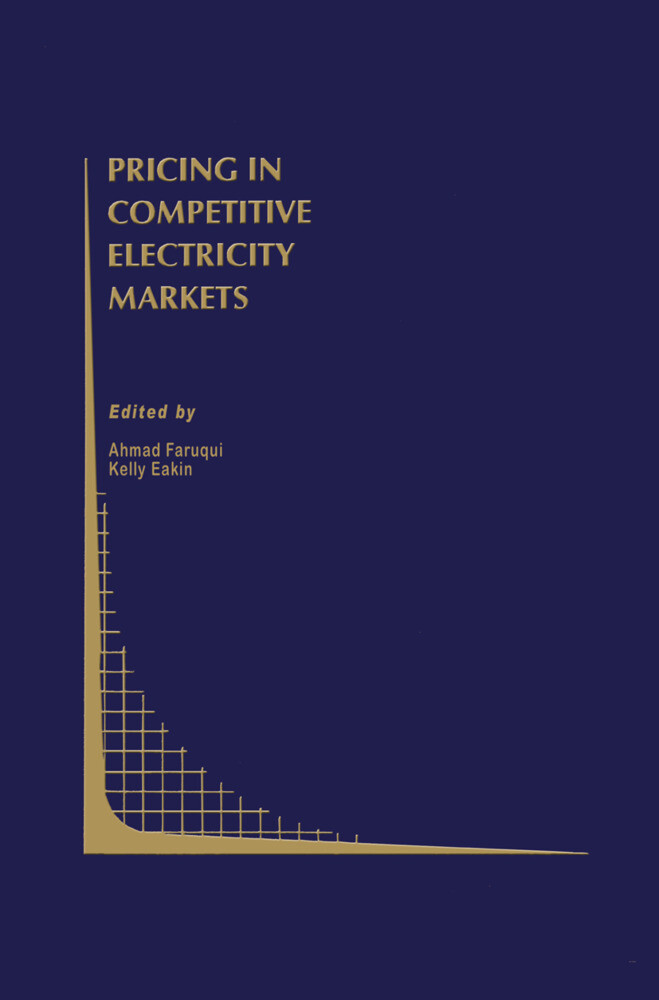 Pricing in Competitive Electricity Markets als Buch