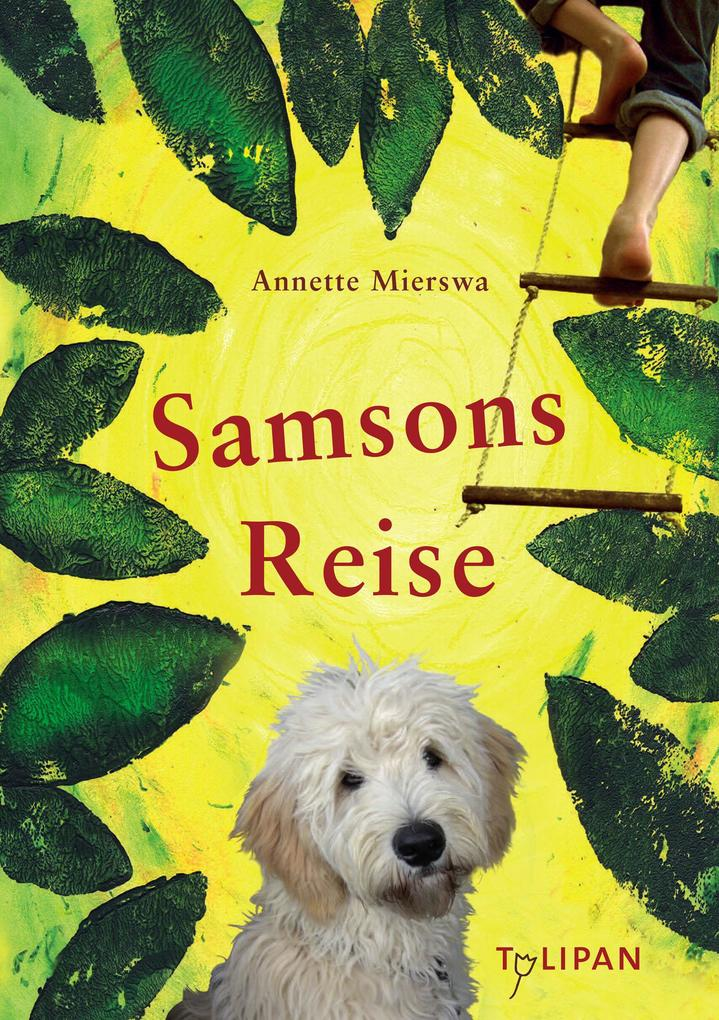 Samsons Reise als eBook epub