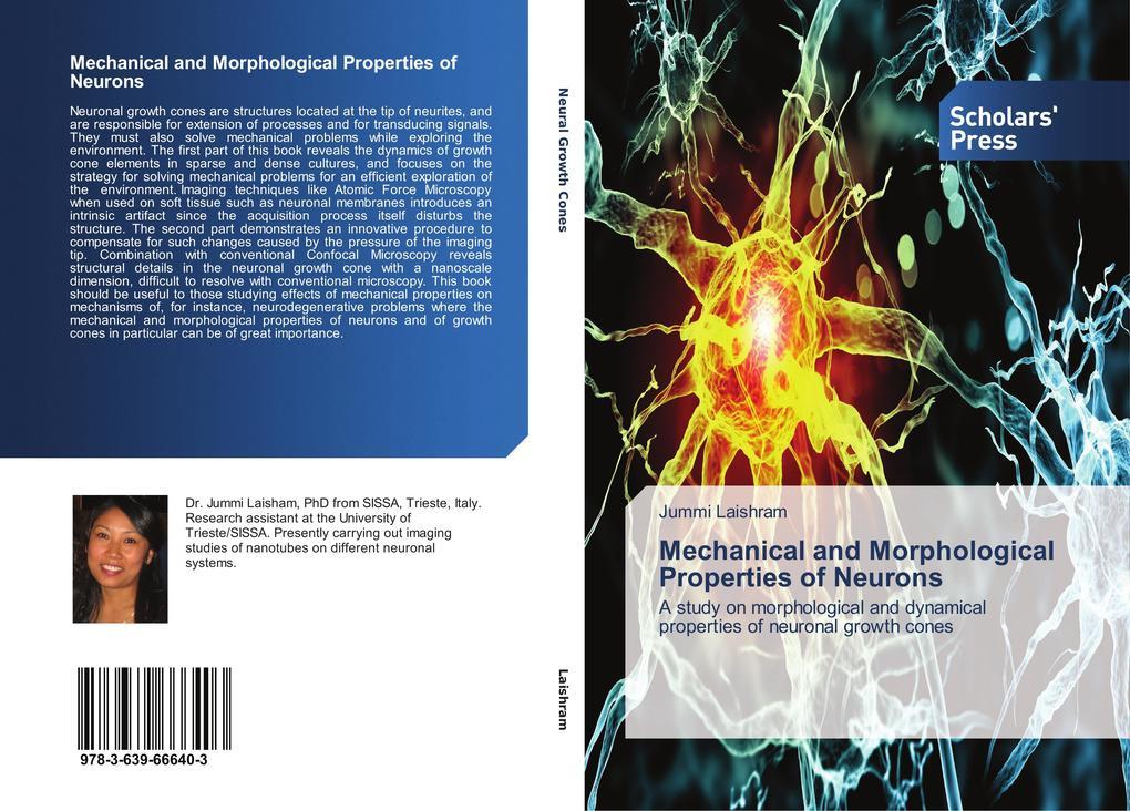 Mechanical and Morphological Properties of Neurons als Buch (gebunden)