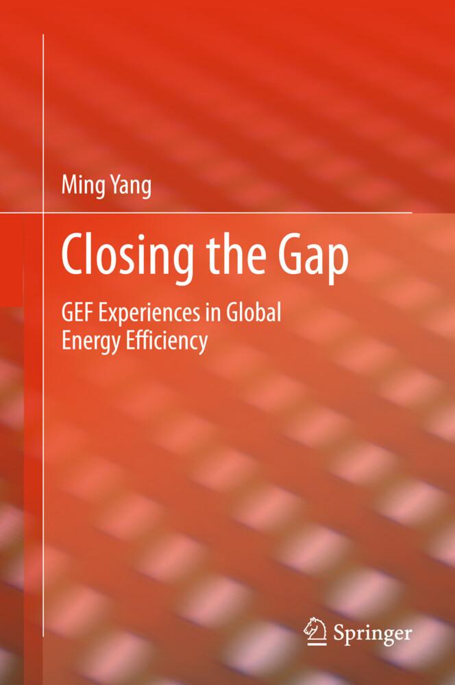 Closing the Gap als Buch (gebunden)