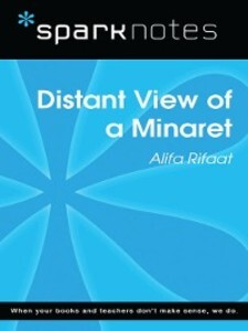 Distant View of a Minaret: SparkNotes Literatur...