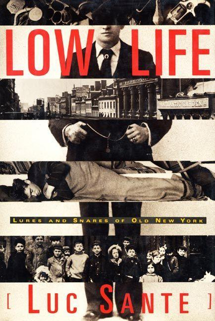 Low Life: Lures and Snares of Old New York als Taschenbuch